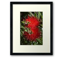 Red Things Framed Print