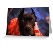 American Pit Bull Terrier Greeting Card