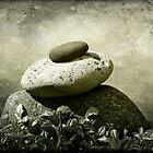 Balanced 2 by Ellen Cotton