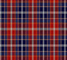 02124 Wombles #5 Tartan Fabric Print Iphone Case by Detnecs2013