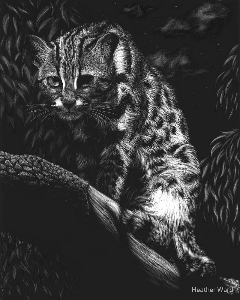 Vantage Point - leopard cat by Heather Ward