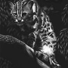 Vantage Point - leopard cat by Heather Ward