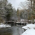 Winter Brook by joycemlheureux