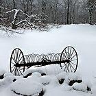 Hay Raker in Winter by joycemlheureux