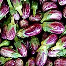 Aubergine by Janie. D