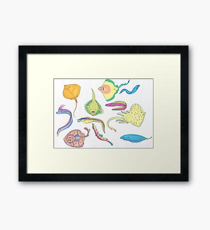 rays and eels Framed Print