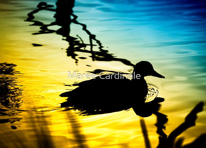 Sunset on Jubilee Lake by Maree Cardinale