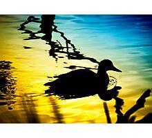 Sunset on Jubilee Lake Photographic Print