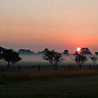 Sunrise by CCLphotography