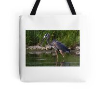Great Blue Heron catches fish Tote Bag