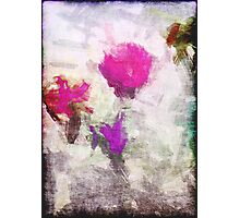 Grungy Flowers Photographic Print