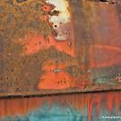 Rusty Door Panel by James Brotherton