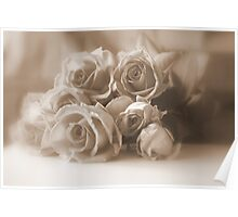 Roses in Sepia Poster