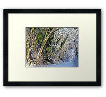Winters Track Framed Print
