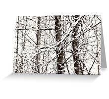 silent white tree~ Greeting Card