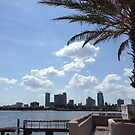 Clearwater Florida Sky Line by CarlaFrench