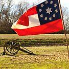 Civil War Re-Enactors by WildestArt