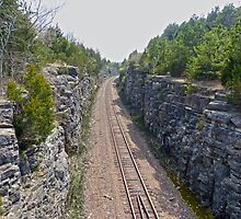 Railroad Tracks Out of Town by Susan S. Kline