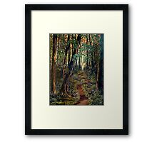 A Path For The Soul Framed Print