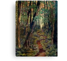 A Path For The Soul Canvas Print