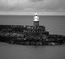 Fishguard Lighthouse by CHINOIMAGES