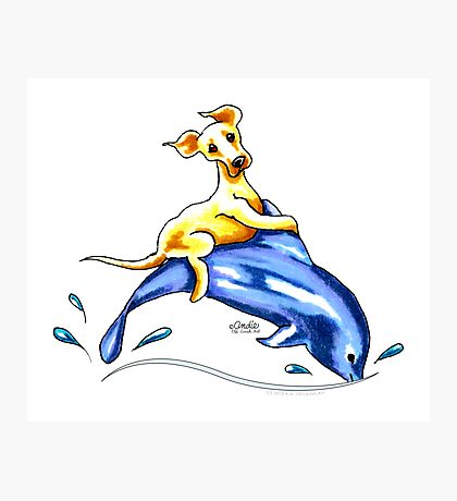 Yellow Lab Dolphin Ride Photographic Print