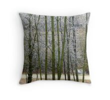 Trees with Late Frost Throw Pillow