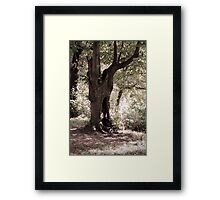 The Ghost Tree Framed Print