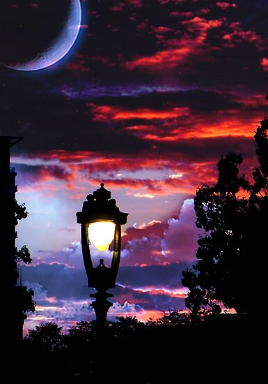 Twilight © by Dawn M. Becker