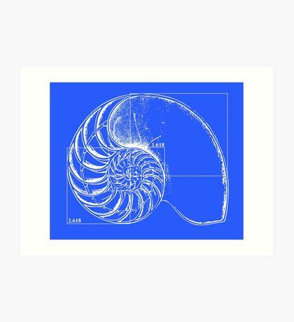 Fibonacci on a nautilus shell (blue) Art Print