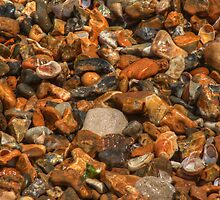Pebbles and stones on the beach by Chris Day