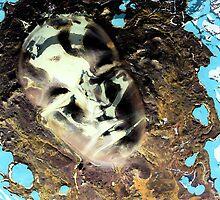 Muddy Waters by Tina Vaughn