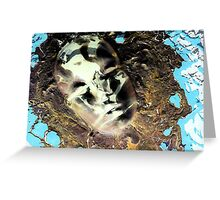 Muddy Waters Greeting Card