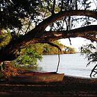 Simple Paradise, Ometempe, Nicaragua by Kurt  Van Wagner
