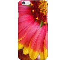 Blanket Flower ~ Gaillardia iPhone Case/Skin