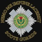 Scots Guards by 5thcolumn