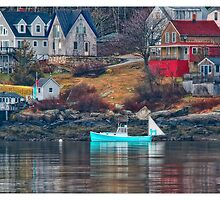 Maine Island Life by Richard Bean