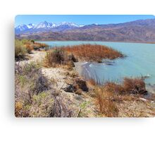 Rugged And Raw Canvas Print