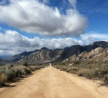 Scenic Bypass California by Kristy Moodie