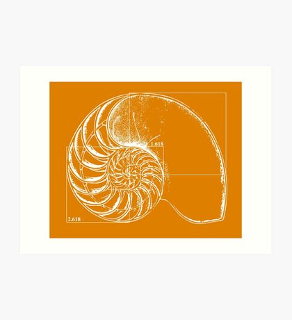 Fibonacci on a nautilus shell (orange) Art Print