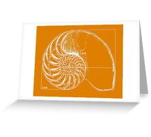 Fibonacci on a nautilus shell (orange) Greeting Card