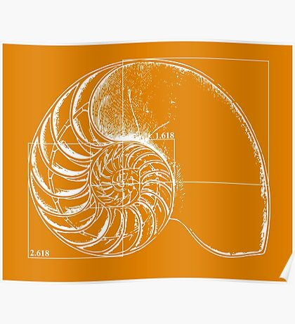 Fibonacci on a nautilus shell (orange) Poster
