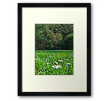 spring break Framed Print
