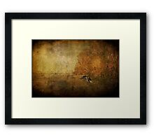 Sandpiper Piping Framed Print