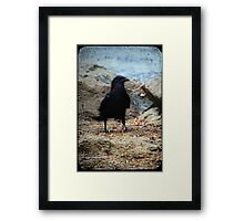 A Bird Framed Print