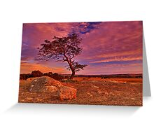 """Solitude At Sundown"" Greeting Card"