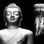 Buddha by Baina Masquelier