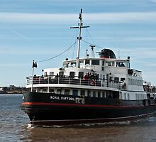 Royal Daffodil, Liverpool River Mersey Ferry by Dave Wood