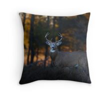 A big 7 pointer - White-tailed Deer Throw Pillow
