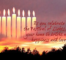 Festival of Lights by Scott Mitchell